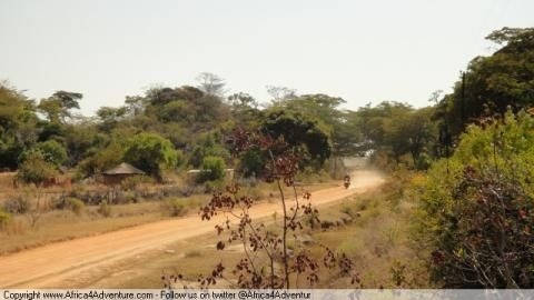backroad-from-bulawayo-to-